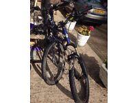 cxr5 i drive gt BikeRadar