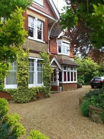 GUILDFORD: Double room in shared flat