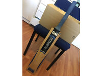 GM Octane F2 DXM 808 Grade A English Willow Short handle Cricket bat