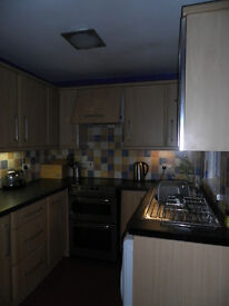 Two double rooms available in Upper Ormeau for professional females. Good house, settled, great area