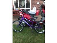 Child's Raleigh mountain bike 8 years up