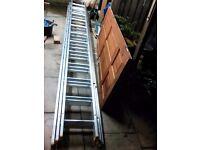 Triple 12 alloy ladder