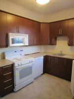 VENDOME METRO - RENOVATED 5 1/2 IN N-D-G- HEAT, FRIDGE, STOVE!