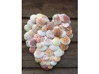 Sea shell heart (approx 20cm)