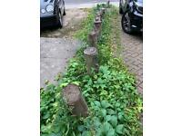 Tree wood Trunk 16 pieces-£5 each -in Ealing