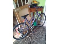 Womens/Girls Dynamix Mountain Bike 21 Gears Shimano