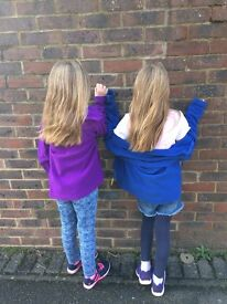 After school nanny / babysitter needed for 8 year old twin girls, Fulflood, Winchester.