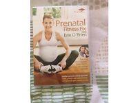 Prenatal Fitness Fix DVD