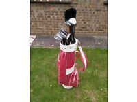 Golf club set with bag,trolley, glove,balls