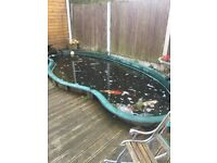 28ft fish pond with full set up and fish
