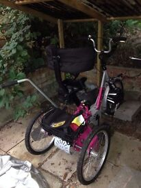 Special Needs Tricycle, with steering handle, back brace, foot plates and rear basket