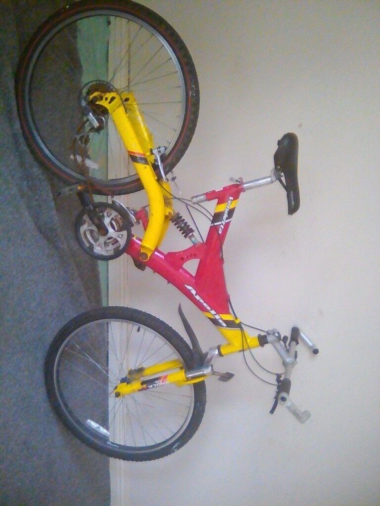Bike and bike frame