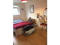 Double Room in Battersea to Let (4-9 weeks)