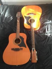 Vintage 12 string guitars