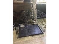 New unused 76cms wide x 53cms deep dog crate, with plastic tray and stainless steel water bowel
