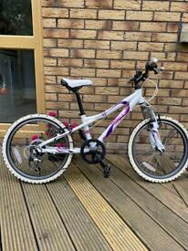 Dawes Redtail girls bike