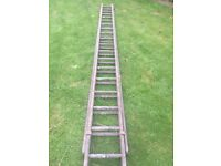 22ft Strong Wooden Ladder