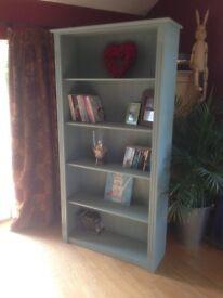 Annie Sloan Duck Egg Bookcase