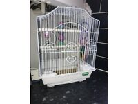 Small bird cage and fince