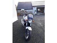 Honda CBF 500-4 2004- ONLY 6350 Miles - Fabulous Condition