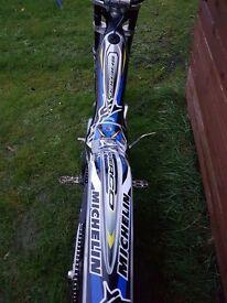 Sherco trials bikes