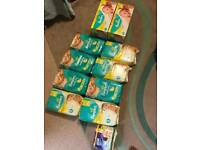 Over 500 Brand New Pampers Nappies in Size 1 and 2