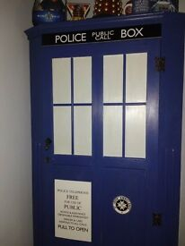 Dr who hand painted single wardrobe excellent condtioni