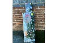 Wilkos 6ft Christmas tree and multi-coloured lights