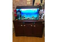 Fish Tank 120 Litres with accessories