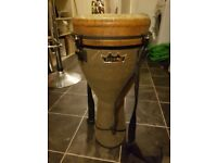Remo World Percussion Djembe With Case