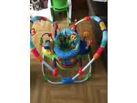2x Baby Einstein bouncer/jumperoo. Twins?