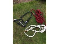 Lunging equipment cob size