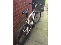 Raleigh mountain bike with combination lock