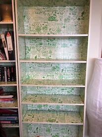Ex Ikea bookshelf