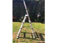 Telesteps foldable ladder