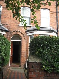 double room to let in Delhi Street room off Ormeau Road