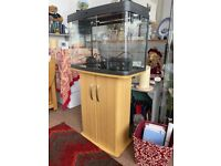 Love Fish tank with stand