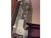 Rabbit/Guniea pig cage