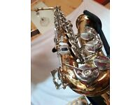 Da Vinci Alto Sax and Extras