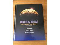 Neuroscience exploring the brain