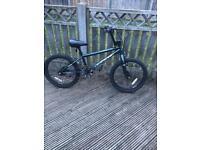 20 inch Apollo BMX bike