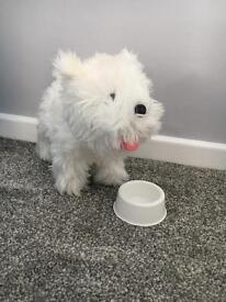 Toy fluffy dog