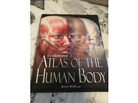 Atlas of the human body book, new.