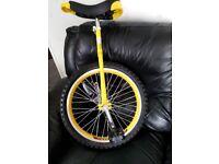 """Foxhunter Unicycle 20"""" wheel."""