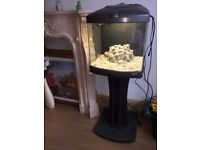 FISHTANK WITH ACCESSORIES