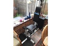 Carl Lewis Home Gym multi gym weights