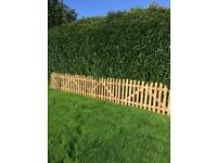 Picket Fencing deal