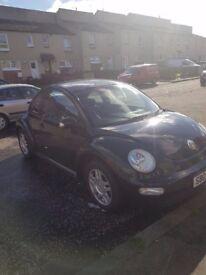 Black beetle 1.6