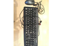 microsoft keyboard and advent mouse