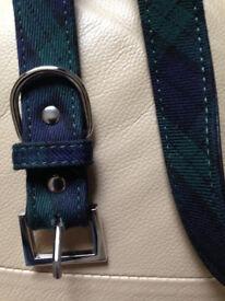 Tartan brand new dog collar and lead